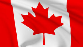 Flag of Canada. National flag of Canada flying in the wind, 3d illustration closeup view Stock Image