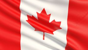 The flag of Canada, often referred to as the Canadian flag. vector illustration