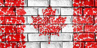 Flag of Canada painted from maple leaf onto a grunge brick wall. Royalty Free Stock Images