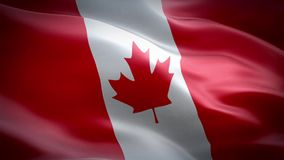 Flag of Canada. Waving flag of Canada. two colors red and white. The flag of Canada, often referred to as the Canadian flag, or unofficially as the Maple Leaf stock footage