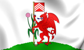 Flag of Cardiff City, Wales. Royalty Free Stock Photography