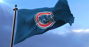Flag of the Chicago Cubs, american professional baseball team, waving - loop. Flag of the team of the Chicago Cubs, american professional baseball team, waving stock video footage