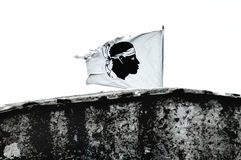 Flag of Corsica. Moor head Stock Photography