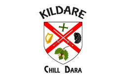 Flag of County Kildare is a county in Ireland. It is located in the province of Leinster and is part of the Mid-East Region. It is named after the town of royalty free stock photo