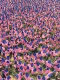 Flag_Day01 Fotografia Stock Libera da Diritti