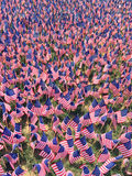 Flag_Day01 Royalty Free Stock Photo