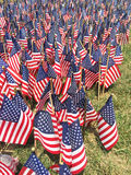 Flag_Day_02 Royalty Free Stock Image