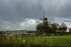 The with flag decorated mill near the village Buren, The Netherlands. A mill standing in a beautiful landscape, on a rainy day Royalty Free Stock Photo