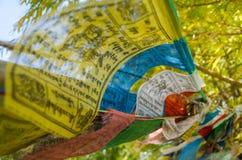 flag den tibetana bönen Arkivfoton