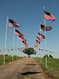 Flag Display on Cemetary on Memorial Day Stock Photos
