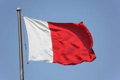 Flag of Dubai Royalty Free Stock Images