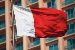 Flag of Dubai Stock Photo