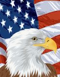 Flag and Eagle Royalty Free Stock Image