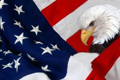 Flag and eagle Stock Images