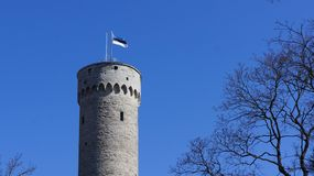 Flag of Estonia on Massive old historic tower in Tallinn Stock Photo