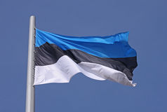 Flag of Estonia Stock Photos