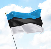 Flag of Estonia. Raised Up in The Sky Stock Photo