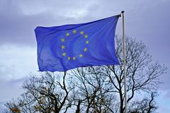 Flag of European Union against an overcast sky and bare trees in November royalty free stock photo