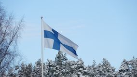 Flag Of Finland Waving stock footage