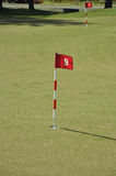 Flag and Flagstick on a Golf Course Practive Green. Flag and Flagstick with Shadow on a Golf Course Practive Green Stock Photo