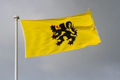 The flag of Flanders. The flag of the Flanders region of Belgium on a flag pole Royalty Free Stock Images