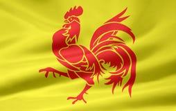 Flag of the french community - Belgium Stock Photos
