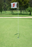 Flag golf. Flag and Flagstick with Shadow on a Golf Course Practive Green Stock Photography