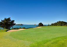 Flag on a golf course. A flag on a green of a golf course overlooking the ocean royalty free stock images