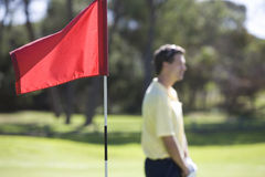 Flag on a golf course, close-up Royalty Free Stock Images