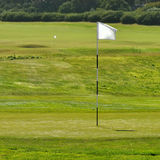 Flag at golf field. Flag on golf course, another flag in background and ball Royalty Free Stock Image