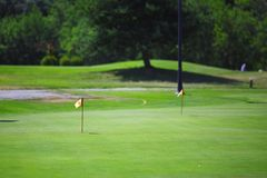 Flag and the golf field. Flag and the summer golf field Stock Photos