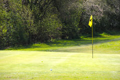 Flag on the golf field. And forest on background Royalty Free Stock Photography