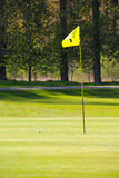 Flag on the golf field. And forest on background Royalty Free Stock Images