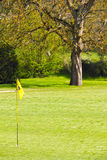 Flag on the golf field. And forest on background Royalty Free Stock Photo