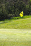 Flag on the golf field. And forest on background Royalty Free Stock Image
