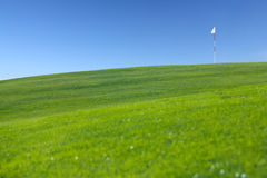 Flag on golf field. Flag on hill of golf field, idyllic summer landscape Stock Images