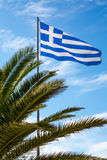 Flag of Greece and palm  tree Stock Image