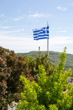 Flag of Greece and the trees Stock Photo