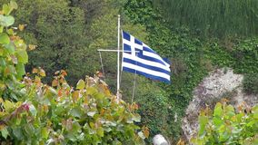 Flag of Greece waving in the wind. Between natural surrounding with trees stock footage