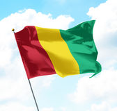 Flag of Guinea Stock Image