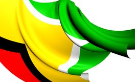 Flag of Guyana Royalty Free Stock Images