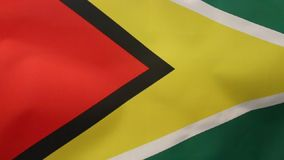 Flag of Guyana. The flag of Guyana, known as The Golden Arrow, has been the national flag of Guyana since May 1966 when the country became independent from the royalty free illustration