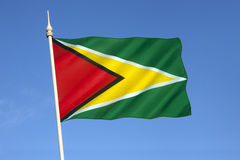 Flag of Guyana - South America. The flag of Guyana, known as The Golden Arrow, has been the national flag of Guyana since May 1966 when the country became Stock Photo