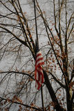 FLAG AT HALF MAST Royalty Free Stock Photos