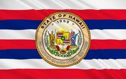 Flag of Hawaii, USA stock illustration