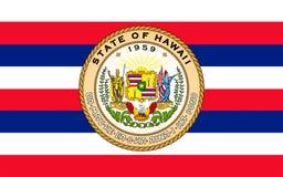 Flag of Hawaii, USA. Flag of Hawaii, Honolulu - United States stock photo