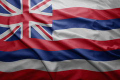 Flag of Hawaii state royalty free illustration