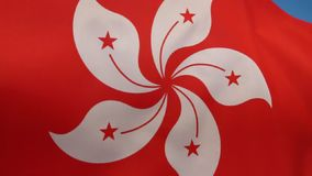 Flag of Hong Kong. Regional Flag of the Hong Kong Special Administrative Region of the People's Republic of China stock video footage