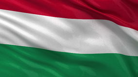Flag of Hungary seamless loop Royalty Free Stock Images