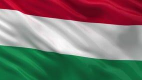 Flag of Hungary seamless loop stock video footage